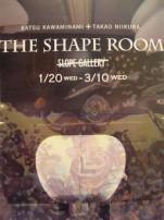 The shape room1